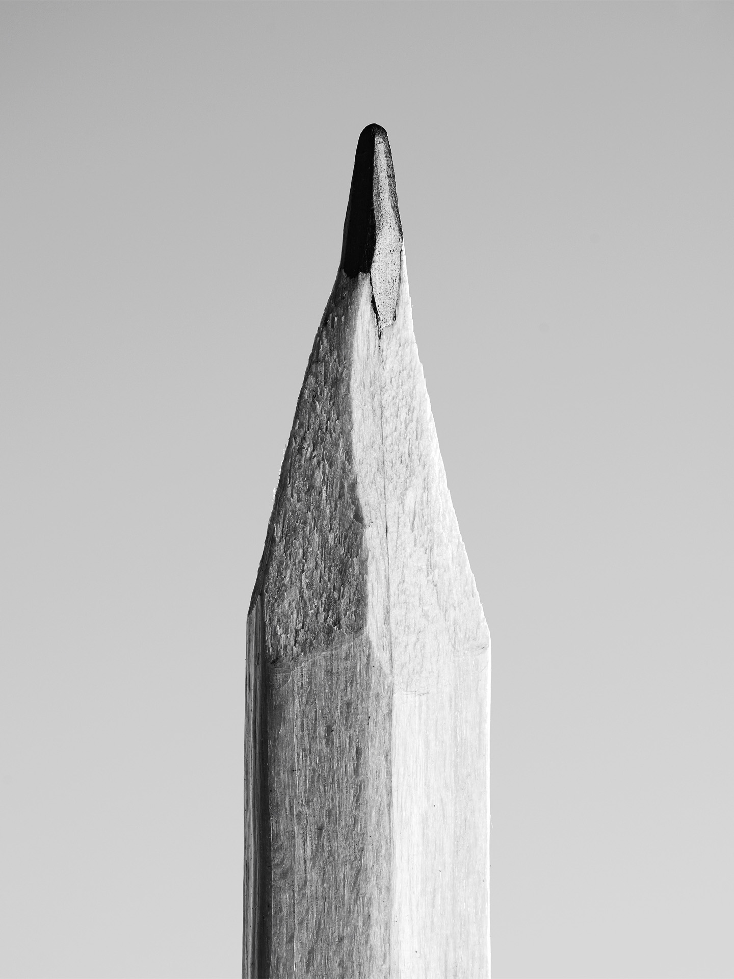 home the secret life of the pencil